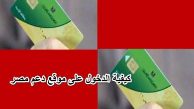 كيفية الدخول على موقع دعم مصر