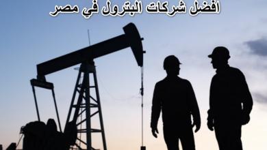 شركات البترول في مصر