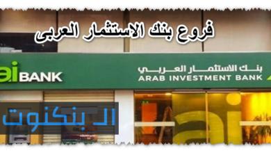 فروع بنك الاستثمار العربى